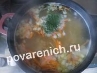 Суп с вермишелью и свининой